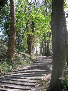 Escaliers-Lorette